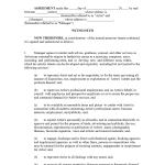 internship agreement template. Black Bedroom Furniture Sets. Home Design Ideas